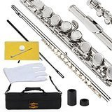 Glory Closed Hole C Flute With Case, Tuning Rod and Cloth, Joint Grease and Gloves